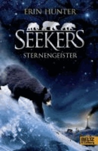 Seekers 06. Sternengeister.