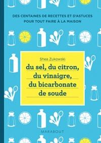 Galabria.be Du sel, du citron, du vinaigre, du bicarbonate de soude - 250 recettes naturelles pour la maison Image