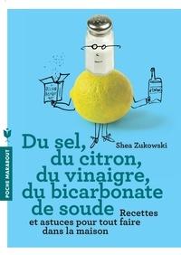 Checkpointfrance.fr Du sel, du citron, du vinaigre, du bicarbonate de soude - 250 recettes naturelles pour la maison Image