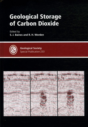 Shelagh J Baines - Geological Storage of Carbon Dioxide.