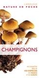 Shelley Evans et Geoffrey Kibby - Champignons - Reconnaître près de 450 espèces en France et en Europe.