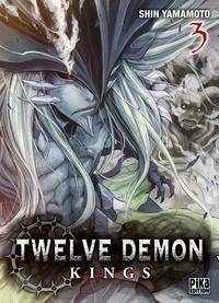 Shin Yamamoto - Twelve Demon Kings Tome 3 : .