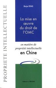 La mise en oeuvre du droit de lOMC en matière de propriété intellectuelle en Chine - Etude sur le droit chinois des brevets avec une perspective française et européenne.pdf