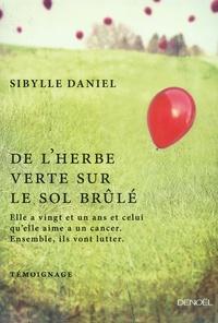 Sibylle Daniel - De l'herbe verte sur le sol brûlé.