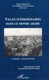 Sid-Ahmed Souiah - Groupe de Recherches sur le Maghreb et le Moyen-Orient N° 19 : Villes intermédiaires dans le monde arabe.