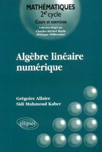 Sidi Mahmoud Kaber et Grégoire Allaire - .