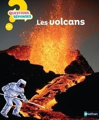 Simon Adams et Elisabeth de Galbert - Les Volcans.