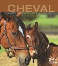 Sky Comm - Une vie de cheval - Sauvage, fougueux, noble, gracieux.