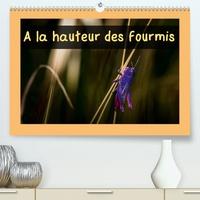 Guilhem Manzano - A la hauteur des fourmis (Calendrier supérieur 2020 DIN A2 horizontal) - Calendrier mensuel, 14 pages avec des macrophotographies d'insectes des Pyrénées Orientales (Calendrier mensuel, 14 Pages ).