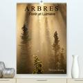 Philippe Henry - ARBRES. Forêt et Lumière (Calendrier supérieur 2020 DIN A2 vertical) - Des arbres dans toute leur beauté. (Calendrier mensuel, 14 Pages ).