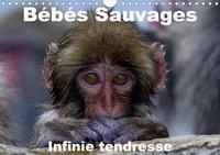 Michel Hagège - CALVENDO Animaux  : Bébés sauvages - Infinie tendresse (Calendrier mural 2020 DIN A4 horizontal) - Bébés mamifères dans leur environnement naturel (Calendrier mensuel, 14 Pages ).