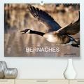 Philippe Henry - BERNACHES(Premium, hochwertiger DIN A2 Wandkalender 2020, Kunstdruck in Hochglanz) - Les quatre saisons de la Bernache du Canada (Calendrier mensuel, 14 Pages ).