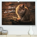 Viktor Gross - Blues de Chats (Calendrier supérieur 2020 DIN A2 horizontal) - Des chats élevés avec le blues dans le sang ! (Calendrier mensuel, 14 Pages ).