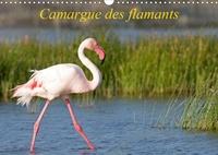 Henry Ausloos - CALVENDO Animaux  : Camargue des flamants (Calendrier mural 2021 DIN A3 horizontal) - La Camargue, ses flamants et ses ciels magnifiques et changeants. (Calendrier mensuel, 14 Pages ).