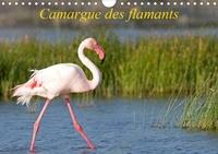 Henry Ausloos - CALVENDO Animaux  : Camargue des flamants (Calendrier mural 2021 DIN A4 horizontal) - La Camargue, ses flamants et ses ciels magnifiques et changeants. (Calendrier mensuel, 14 Pages ).