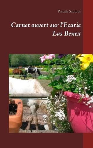 Pascale Sautour - Carnet ouvert sur l'Ecurie Las Benex.