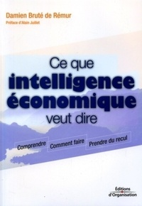 Damien Bruté de Rémur - Ce que l'intelligence économique veut dire.