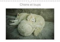 Miss Terry - CALVENDO Animaux  : Chiens et loups (Calendrier mural 2020 DIN A4 horizontal) - Photographies de chiens et loups de France et du Canada (Calendrier mensuel, 14 Pages ).