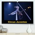 Alain Hanel - Circus Juventas (Calendrier supérieur 2020 DIN A2 horizontal) - Le Circus Juventas est une école de cirque dans le Minnesota (Calendrier mensuel, 14 Pages ).