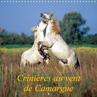 Henry Ausloos - CALVENDO Animaux  : Crinières au vent de Camargue (Calendrier mural 2021 300 × 300 mm Square) - Camargue, terre de vents, de liberté, de soleil, blanche comme le sel, blanche comme ses chevaux. (Calendrier mensuel, 14 Pages ).