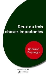 Bertrand Puysségur - Deux ou trois choses importantes.