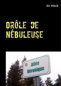 Iris Rivaldi - Drôle de nébuleuse - Les aventures du commissaire Paul Berger.