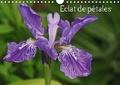 Patrick Cannaux - Eclat de pétales (Calendrier mural 2020 DIN A4 horizontal) - Les fleurs embellissent nos journées (Calendrier mensuel, 14 Pages ).