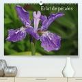 Patrick Cannaux - Eclat de pétales (Calendrier supérieur 2020 DIN A2 horizontal) - Les fleurs embellissent nos journées (Calendrier mensuel, 14 Pages ).