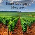 Didier Sibourg - Entre les vignes Mercurey (Calendrier mural 2020 300 × 300 mm Square) - Vignoble de Mercurey en plein coeur de la Côte Chalonnaise (Calendrier mensuel, 14 Pages ).
