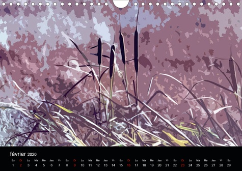 Equarelles (Calendrier mural 2020 DIN A4 horizontal). Digigraphies d'après photos (Calendrier mensuel, 14 Pages )