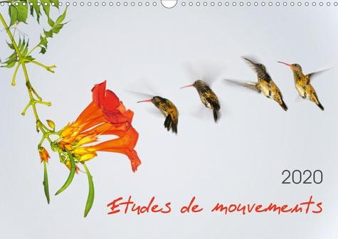 Etudes de mouvements (Calendrier mural 2020 DIN A3 horizontal). Etudes de mouvements: série de douze photos mettant en scène la dynamique des mouvements : animaux, personnages, sports. (Calendrier mensuel, 14 Pages )