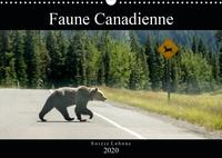 Soizic Lebouc - Faune Canadienne (Calendrier mural 2020 DIN A3 horizontal) - À la rencontre de la faune ouest-canadienne. (Calendrier mensuel, 14 Pages ).