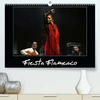 Alain Hanel - CALVENDO Art  : Fiesta Flamenco (Premium, hochwertiger DIN A2 Wandkalender 2021, Kunstdruck in Hochglanz) - Spectacle estival à Cannes ; le flamenco est à l'honneur (Calendrier mensuel, 14 Pages ).