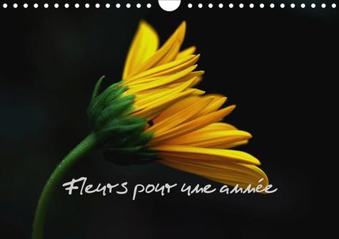Fleurs pour une année (Calendrier mural 2020 DIN A4 horizontal). Quelques splendides fleurs pour vos yeux (Calendrier mensuel, 14 Pages )