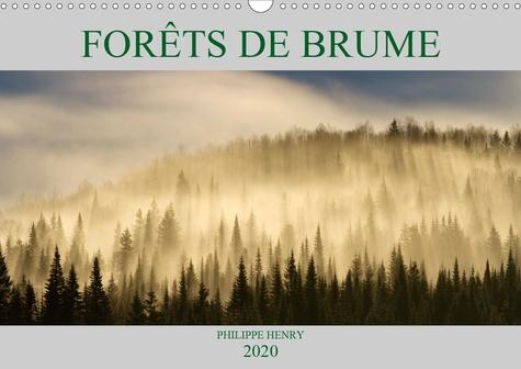 FORÊTS DE BRUME (Calendrier mural 2020 DIN A3 horizontal). Paysages de forêts baignées de brume. 14 photos de forêts recouvertes de brume. Pour une ambiance de contes et de légendes (Calendrier mensuel, 14 Pages )