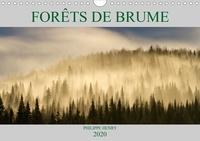 Philippe Henry - FORÊTS DE BRUME (Calendrier mural 2020 DIN A4 horizontal) - Paysages de forêts baignées de brume. 14 photos de forêts recouvertes de brume. Pour une ambiance de contes et de légendes (Calendrier mensuel, 14 Pages ).