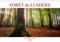 Dominique Guillaume - Forêt de lumière (Calendrier mural 2020 DIN A4 horizontal) - Magie de l'ombre et de la lumière au cœur de la forêt (Calendrier mensuel, 14 Pages ).