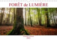 Dominique Guillaume - CALVENDO Nature  : Forêt de lumière (Calendrier mural 2021 DIN A4 horizontal) - Magie de l'ombre et de la lumière au coeur de la forêt (Calendrier mensuel, 14 Pages ).