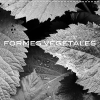 Olivier Pasquiers - CALVENDO Nature  : FORMES VÉGÉTALES (Calendrier mural 2021 300 × 300 mm Square) - Une série de photographies qui met en valeur les richesses des formes végétales produites dans la nature. (Calendrier mensuel, 14 Pages ).
