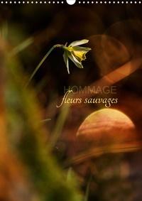 Cécile Gans - Hommage fleurs sauvages (Calendrier mural 2020 DIN A3 vertical) - Petit hommage aux fleurs de nos campagnes (Calendrier mensuel, 14 Pages ).