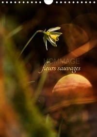 Cécile Gans - Hommage fleurs sauvages (Calendrier mural 2020 DIN A4 vertical) - Petit hommage aux fleurs de nos campagnes (Calendrier mensuel, 14 Pages ).