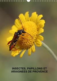 Martine Julien - Insectes, papillons et araignées de Provence (Calendrier mural 2020 DIN A3 vertical) - Les insectes, papillons et araignées de nos belles prairies (Calendrier mensuel, 14 Pages ).