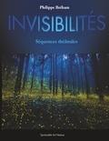 Philippe Breham - Invisibilités.