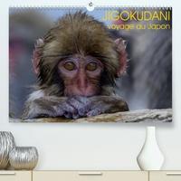 Michel Hagège - JIGOKUDANI voyage au Japon(Premium, hochwertiger DIN A2 Wandkalender 2020, Kunstdruck in Hochglanz) - Un voyage à travers de magnifiques portraits de macaques japonais (Calendrier mensuel, 14 Pages ).