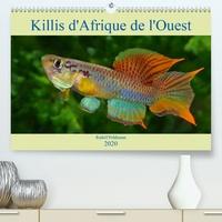 Killis dAfrique de lOuest(Premium, hochwertiger DIN A2 Wandkalender 2020, Kunstdruck in Hochglanz) - Poissons colorés (Calendrier mensuel, 14 Pages ).pdf