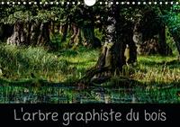 Michel Angot - L'arbre graphiste du bois - L'arbre est le graphiste de la forêt et de l'intérieur de son bois.