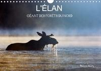 Philippe Henry - L'ÉLAN – GÉANT DES FORÊTS DU NORD (Calendrier mural 2020 DIN A4 horizontal) - Les quatre saisons de l'élan (Calendrier mensuel, 14 Pages ).