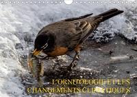 Wido Hoville - L'Ornitologie et les changements climatiques (Calendrier mural 2020 DIN A4 horizontal) - Les changements climatiques affectent l'ornitologie (Calendrier mensuel, 14 Pages ).