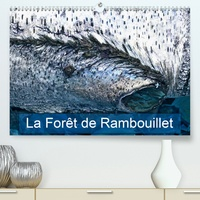 La forêt de Rambouillet(Premium, hochwertiger DIN A2 Wandkalender 2020, Kunstdruck in Hochglanz) - La forêt francilienne de Rambouillet (Calendrier mensuel, 14 Pages ).pdf