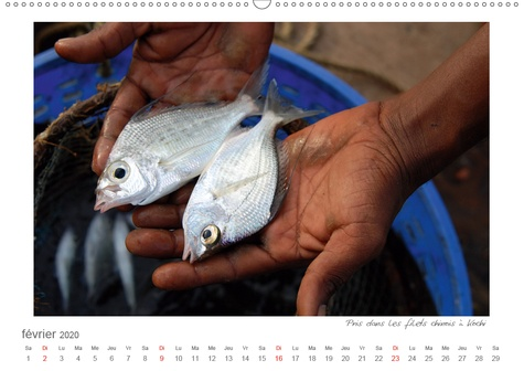 La gaieté des couleurs de Kerala – Impressions de God´s Own Country (Calendrier mural 2020 DIN A2 horizontal). Photos de l'Etat situé sur la mer d'Arabie dans le sud de l'Inde (Calendrier mensuel, 14 Pages )